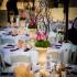 تالار-باغ-عروسی