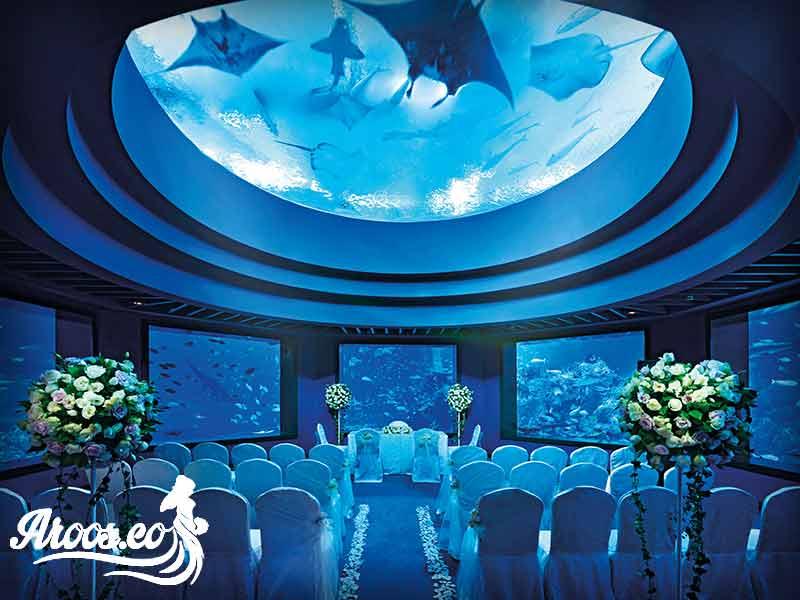 تالار عروس فضای آبی