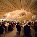carasco-luxury wedding